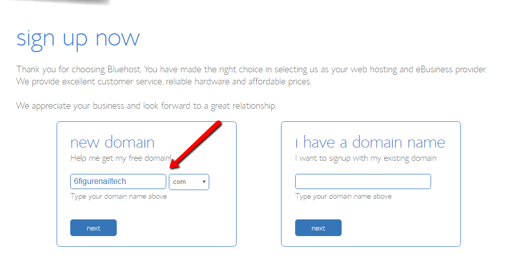 Bluehost hosting and domain names